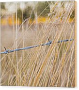 Barb Wire Country Fence Wood Print