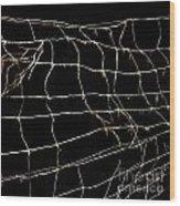 Barbed Wire Wood Print by Bernard Jaubert