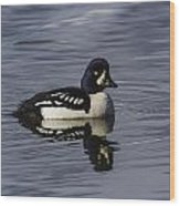Barrows Goldeneye Wood Print