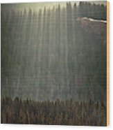 Beams Of Sunlight Shine Over Old Growth Wood Print