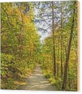 Beautiful Autumn Forest Mountain Stair Path At Sunset Wood Print