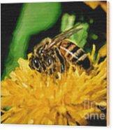 2 Bee Or Not 2 Bee Wood Print