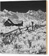 Beyond The Fence Wood Print