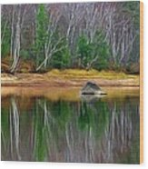 Birch Shoreline Wood Print