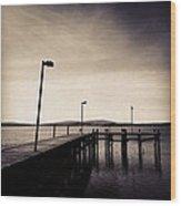 2 Bird Dock Wood Print by CML Brown