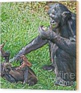 Bonobo Adult And Baby Wood Print