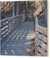 Bridge To The Forest Wood Print