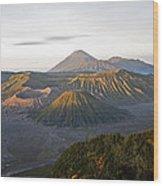 Bromo  Valley  Java Indonesia Wood Print