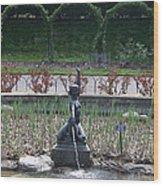 Brooklyn Botanical Gardens Fountain Wood Print