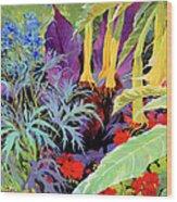 Brugmansia-1 Wood Print