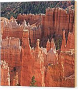 Bryce Canyon Red Rock Wood Print