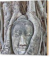 Buddha Head In Tree Wood Print