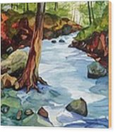 Buffalo River Wood Print