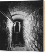 Catacomb Tunnels In Paris France Wood Print