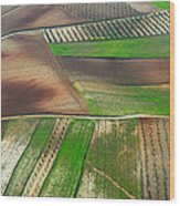 Cereal Fields From The Air Wood Print