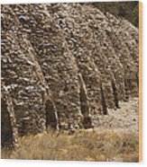 Death Valley Charcoal Kilns Wood Print