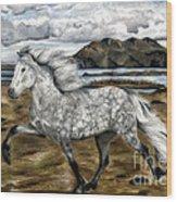 Charismatic Icelandic Horse Wood Print