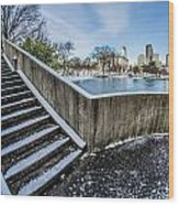 Charlotte North Carolina Marshall Park In Winter Wood Print