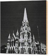 Black And White Basilica Wood Print