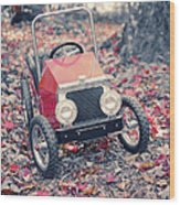 Childhood Memories Wood Print