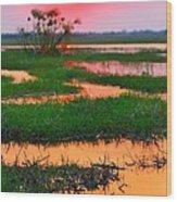 Chobe River Sunset Wood Print
