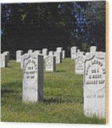Civil War Dead At Arlington Wood Print