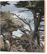 Coast Of California Wood Print