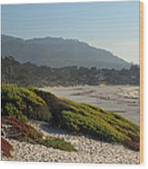 Coastal View - Ice Plant  Wood Print