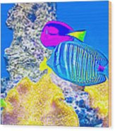 Coral Fishes Wood Print