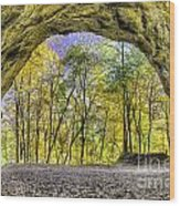 Council Overhang At Starved Rock Wood Print
