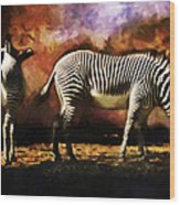 Creation Zebra Wood Print
