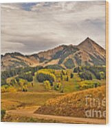 Crested Butte Autumn Wood Print