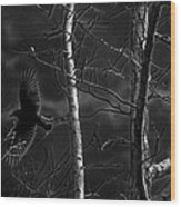 Crow Behind The Trees Wood Print