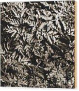Crowded Wood Print