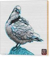 Cyan Pigeon Pop Art 5516 - Fs - Bb -  Modern Animal Artist James Wood Print