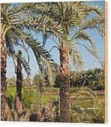 Dakhla Wood Print