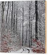 Danish Winter  Wood Print