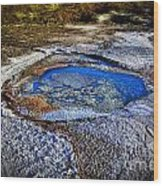 Dead Sea Sink Holes Wood Print by Dan Yeger