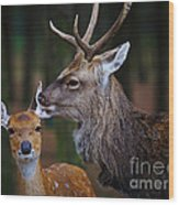 Deer Love Wood Print