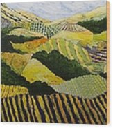 Delta Fields Wood Print