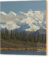 Denali National Park Wood Print
