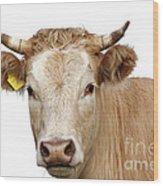 Detail Of Cow Head Wood Print