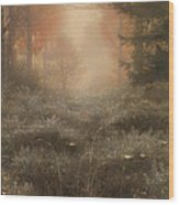 Dew Drenched Furze  Wood Print