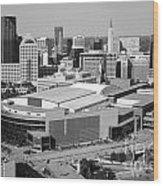 Downtown Skyline Of St. Paul Minnesota Wood Print