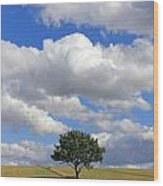 Dramatic Clouds And The Tree Wood Print