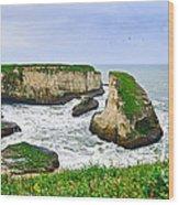 Dramatic Panoramic View Of Shark Fin Cove Wood Print by Jamie Pham