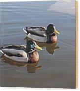 Ducks On Water Wood Print