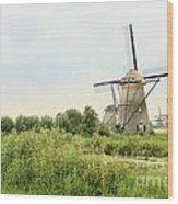 Dutch Landscape With Windmills Wood Print