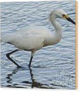 Coastal Egret Wood Print