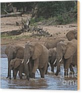 Elephants Crossing The River Wood Print
